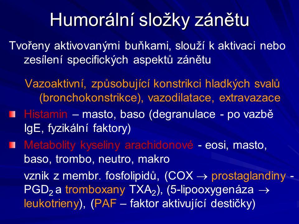 Humorální složky zánětu Tvořeny aktivovanými buňkami, slouží k aktivaci nebo zesílení specifických aspektů zánětu Vazoaktivní, způsobující konstrikci