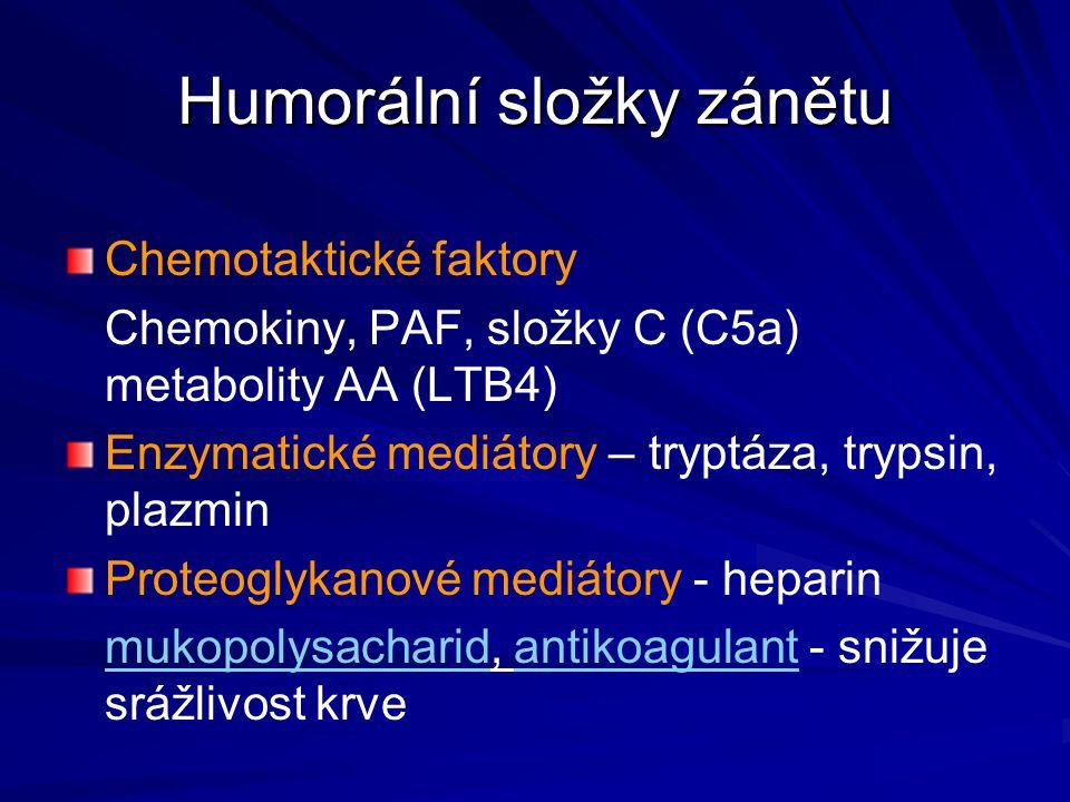 Humorální složky zánětu Chemotaktické faktory Chemokiny, PAF, složky C (C5a) metabolity AA (LTB4) Enzymatické mediátory – tryptáza, trypsin, plazmin P