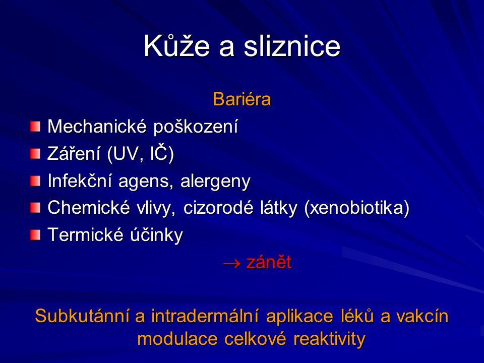 Kůže a sliznice Bariéra Mechanické poškození Záření (UV, IČ) Infekční agens, alergeny Chemické vlivy, cizorodé látky (xenobiotika) Termické účinky  z