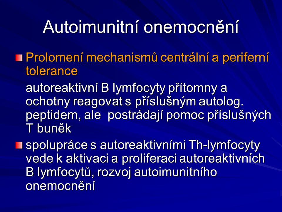 Autoimunitní onemocnění Prolomení mechanismů centrální a periferní tolerance autoreaktivní B lymfocyty přítomny a ochotny reagovat s příslušným autolo