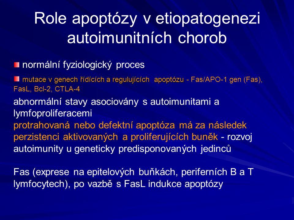 Role apoptózy v etiopatogenezi autoimunitních chorob normální fyziologický proces mutace v genech řídících a regulujících apoptózu mutace v genech říd