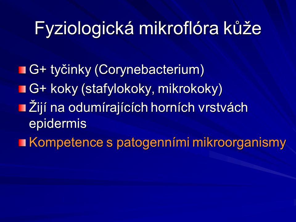 Buněčné složky zánětu Buňky cirkulující Ly, Neu, Eo, Baso, Plt Buňky rezidentní Mastocyty, makrofágy Endoteliální buňky Fibroblasty Keratinocyty Hladké svaly Senzorické nervy