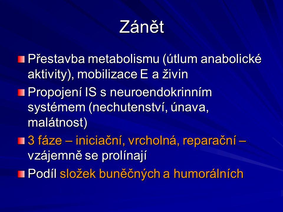 Zánět Přestavba metabolismu (útlum anabolické aktivity), mobilizace E a živin Propojení IS s neuroendokrinním systémem (nechutenství, únava, malátnost