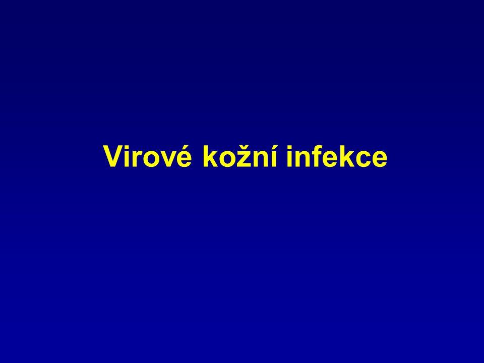  Herpetické infekce (herpes simplex, varicella, herpes zoster)  Infekce papilomaviry (verrucae vulgares, condylomata accuminata)  Infekce pox viry (mollucsum contagiosum)  Virové exantémy