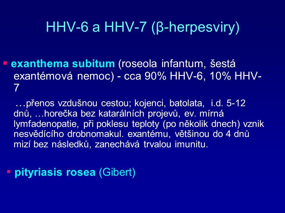 HHV-6 a HHV-7 (β-herpesviry) ▪ exanthema subitum (roseola infantum, šestá exantémová nemoc) - cca 90% HHV-6, 10% HHV- 7 … přenos vzdušnou cestou; koje