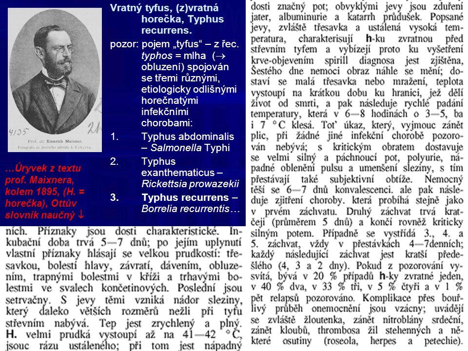 Vratný tyfus, (z)vratná horečka, Typhus recurrens.