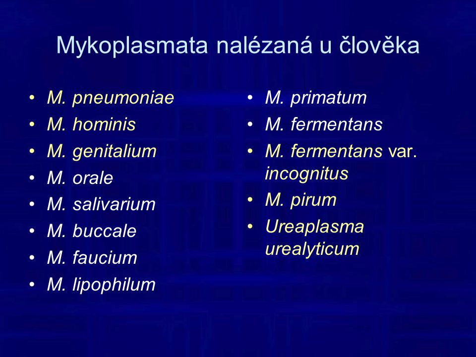 Mykoplasmata nalézaná u člověka M.pneumoniae M. hominis M.