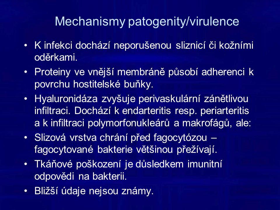 Mechanismy patogenity/virulence K infekci dochází neporušenou sliznicí či kožními oděrkami.