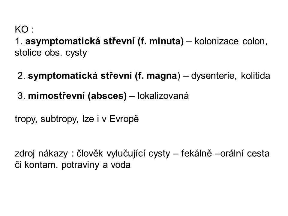KO : 1. asymptomatická střevní (f. minuta) – kolonizace colon, stolice obs. cysty 2. symptomatická střevní (f. magna) – dysenterie, kolitida 3. mimost