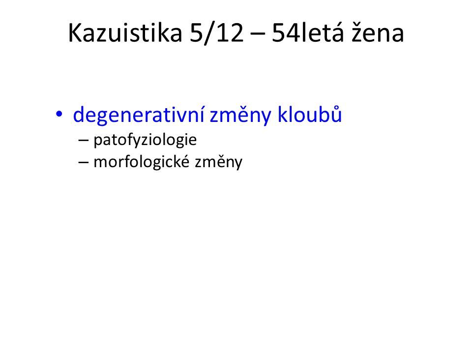 Kazuistika 5/12 – 54letá žena degenerativní změny kloubů – patofyziologie – morfologické změny