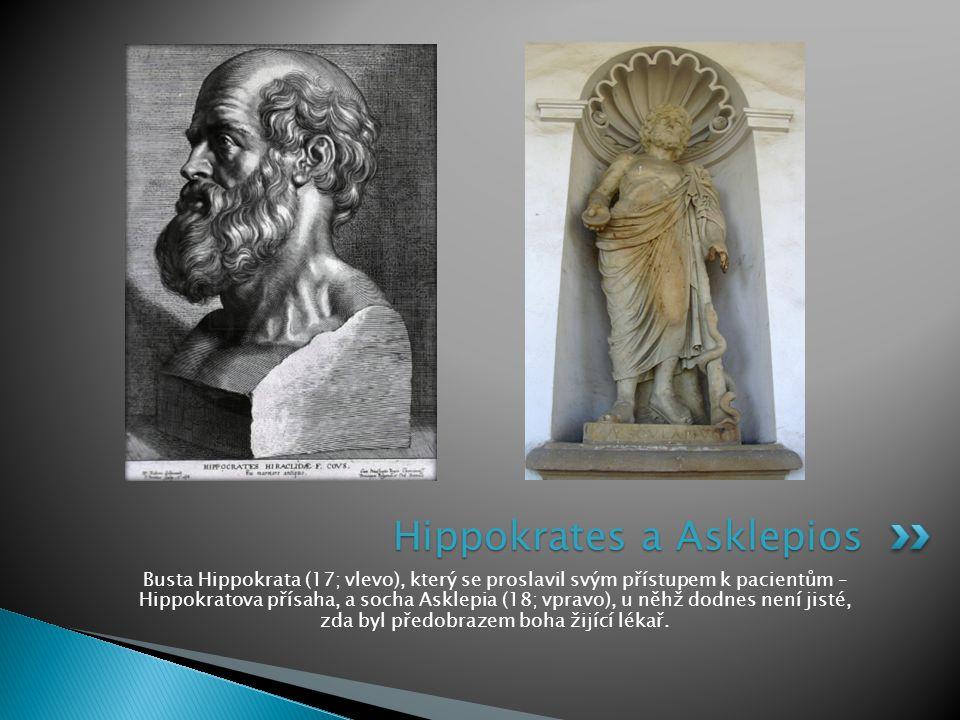 Busta Hippokrata (17; vlevo), který se proslavil svým přístupem k pacientům – Hippokratova přísaha, a socha Asklepia (18; vpravo), u něhž dodnes není jisté, zda byl předobrazem boha žijící lékař.