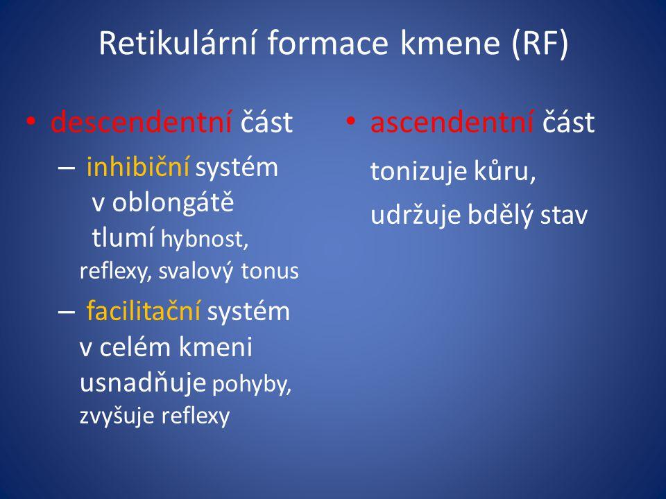 Retikulární formace kmene (RF) descendentní část – inhibiční systém v oblongátě tlumí hybnost, reflexy,svalový tonus – facilitační systém v celém kmeni usnadňuje pohyby, zvyšuje reflexy ascendentní část tonizuje kůru, udržuje bdělý stav