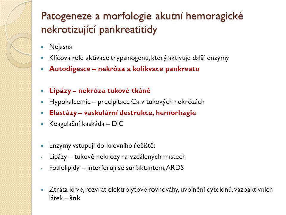 Patogeneze a morfologie akutní hemoragické nekrotizující pankreatitidy Nejasná Klíčová role aktivace trypsinogenu, který aktivuje další enzymy Autodig