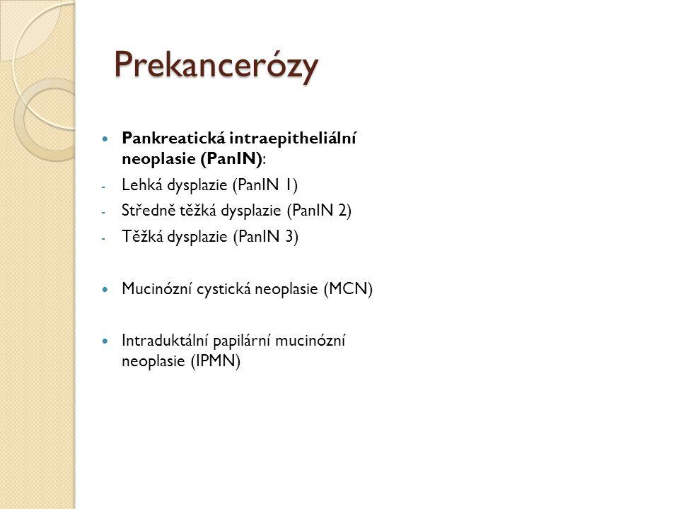 Prekancerózy Pankreatická intraepitheliální neoplasie (PanIN): - Lehká dysplazie (PanIN 1) - Středně těžká dysplazie (PanIN 2) - Těžká dysplazie (PanI