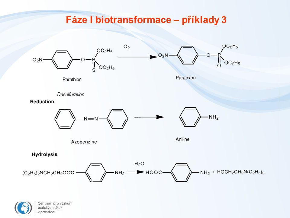 Fáze I biotransformace – příklady 3
