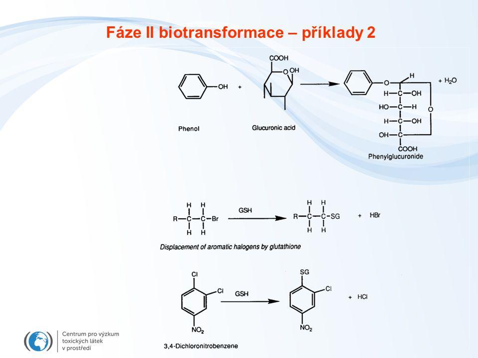 Fáze II biotransformace – příklady 2