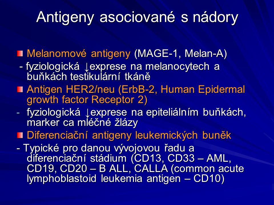 Antigeny asociované s nádory Melanomové antigeny (MAGE-1, Melan-A) - fyziologická ↓exprese na melanocytech a buňkách testikulární tkáně - fyziologická