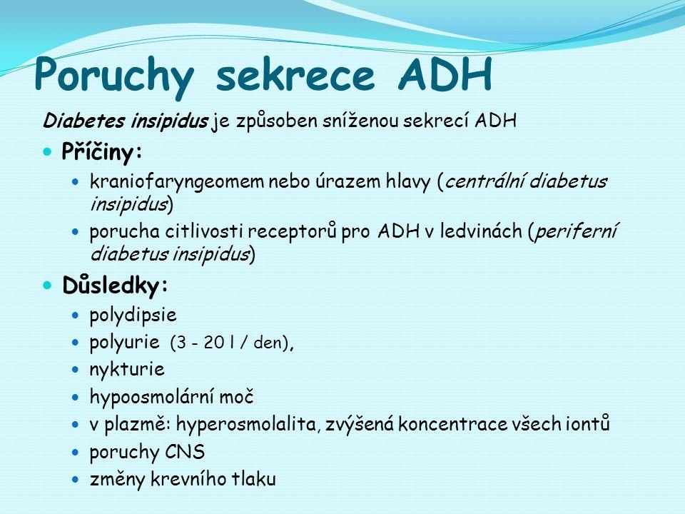 Poruchy sekrece ADH Diabetes insipidus je způsoben sníženou sekrecí ADH Příčiny: kraniofaryngeomem nebo úrazem hlavy (centrální diabetus insipidus) porucha citlivosti receptorů pro ADH v ledvinách (periferní diabetus insipidus) Důsledky: polydipsie polyurie (3 - 20 l / den), nykturie hypoosmolární moč v plazmě: hyperosmolalita, zvýšená koncentrace všech iontů poruchy CNS změny krevního tlaku