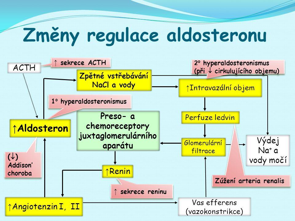 Změny regulace aldosteronu ACTH Preso- a chemoreceptory juxtaglomerulárního aparátu Zpětné vstřebávání NaCl a vody ↑ Intravazální objem ↑ Angiotenzin I, II Glomerulární filtrace Výdej Na + a vody močí Vas efferens (vazokonstrikce) ↑ Renin ↑ Aldosteron Perfuze ledvin (  ) Addison' choroba (  ) Addison' choroba ↑ sekrece reninu 1 º hyperaldosteronismus 2º hyperaldosteronismus (při  cirkulujícího objemu) 2º hyperaldosteronismus (při  cirkulujícího objemu) ↑ sekrece ACTH Zúžení arteria renalis