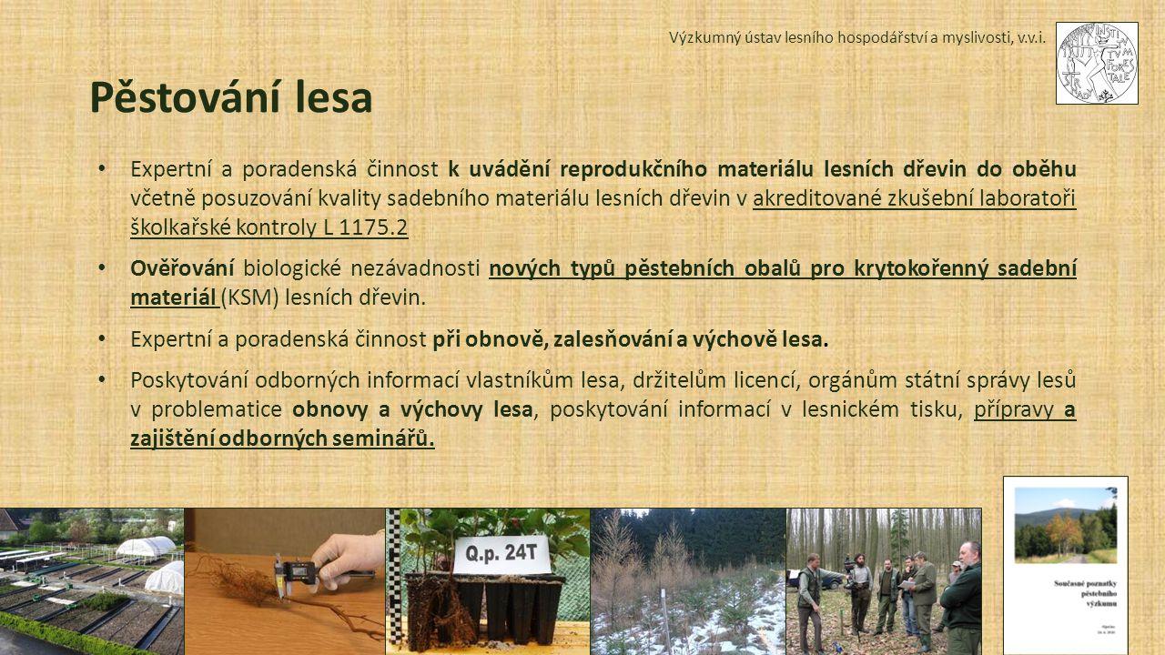 Výzkumný ústav lesního hospodářství a myslivosti, v.v.i. Sedmikráska, 6. 5. 2015 Pěstování lesa Expertní a poradenská činnost k uvádění reprodukčního