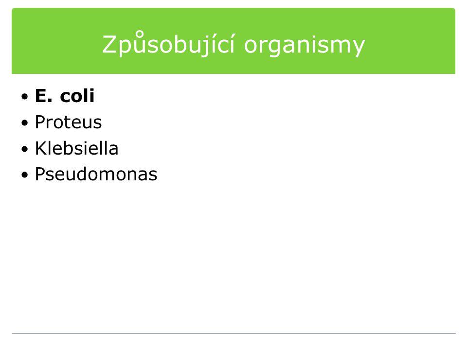 Způsobující organismy E. coli Proteus Klebsiella Pseudomonas