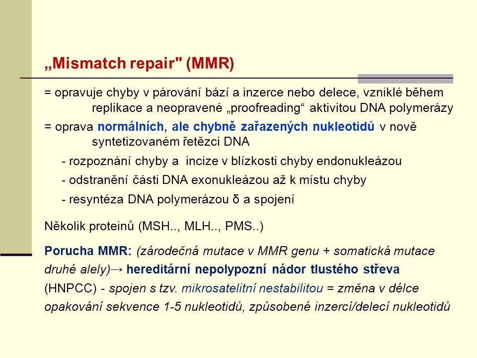 """Mismatch repair"