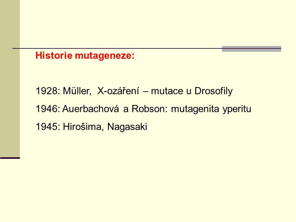 Historie mutageneze: 1928: Müller, X-ozáření – mutace u Drosofily 1946: Auerbachová a Robson: mutagenita yperitu 1945: Hirošima, Nagasaki