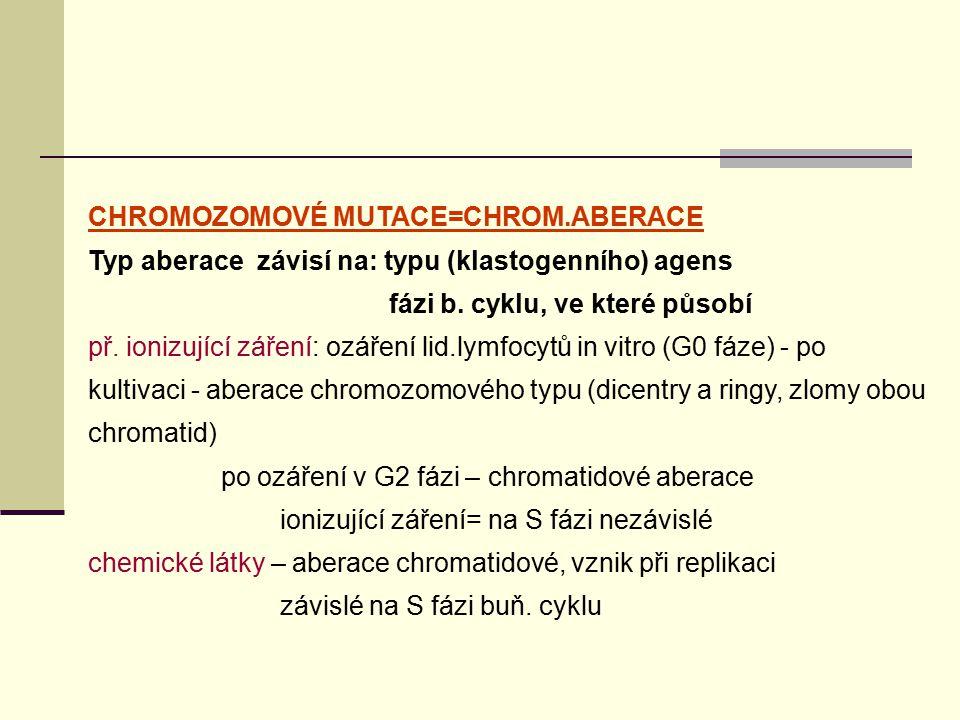 CHROMOZOMOVÉ MUTACE=CHROM.ABERACE Typ aberace závisí na: typu (klastogenního) agens fázi b. cyklu, ve které působí př. ionizující záření: ozáření lid.