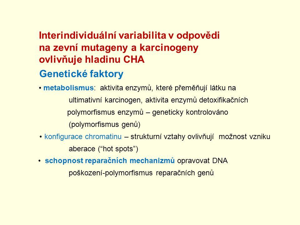 Interindividuální variabilita v odpovědi na zevní mutageny a karcinogeny ovlivňuje hladinu CHA Genetické faktory metabolismus: aktivita enzymů, které