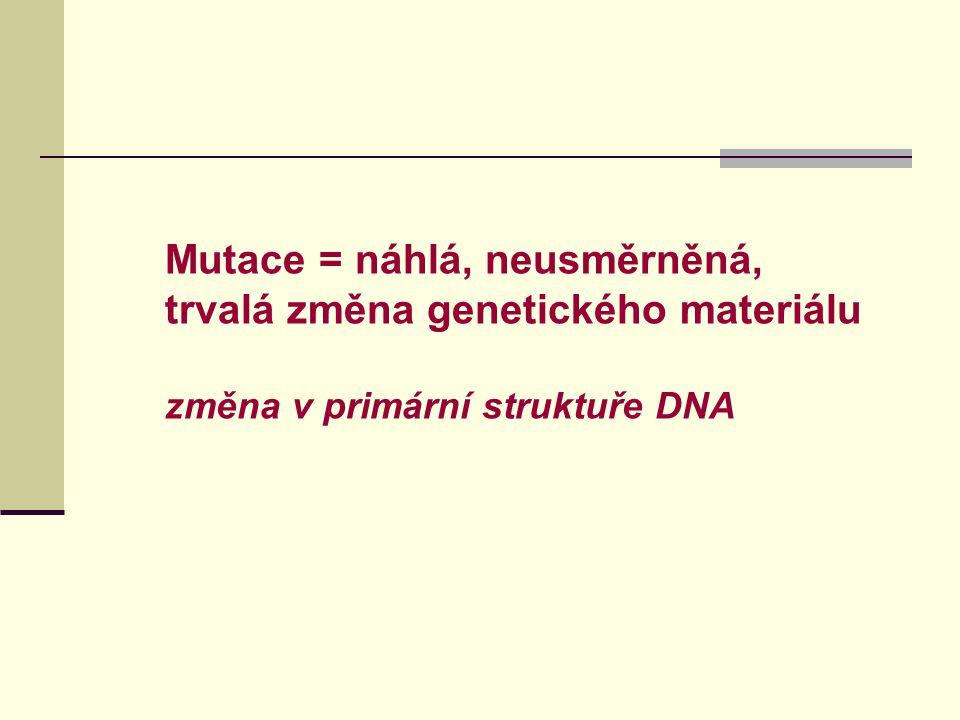  Genotoxicita – vazba na DNA – addukty, chemické modifikace bazí, zlomy DNA  DNA a chromozomální poškození souvisí se vznikem nádorů (každý mutagen = potenciální karcinogen)  Individuální vnímavost na genotoxické poškození (polymorfismus genů metabolismu xenobiotik a DNA reparace) = individuální riziko nádorového onemocnění.