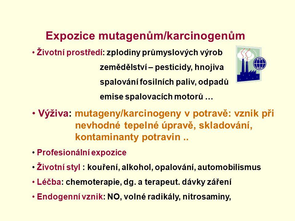 Expozice mutagenům/karcinogenům Životní prostředí: zplodiny průmyslových výrob zemědělství – pesticidy, hnojiva spalování fosilních paliv, odpadů emis