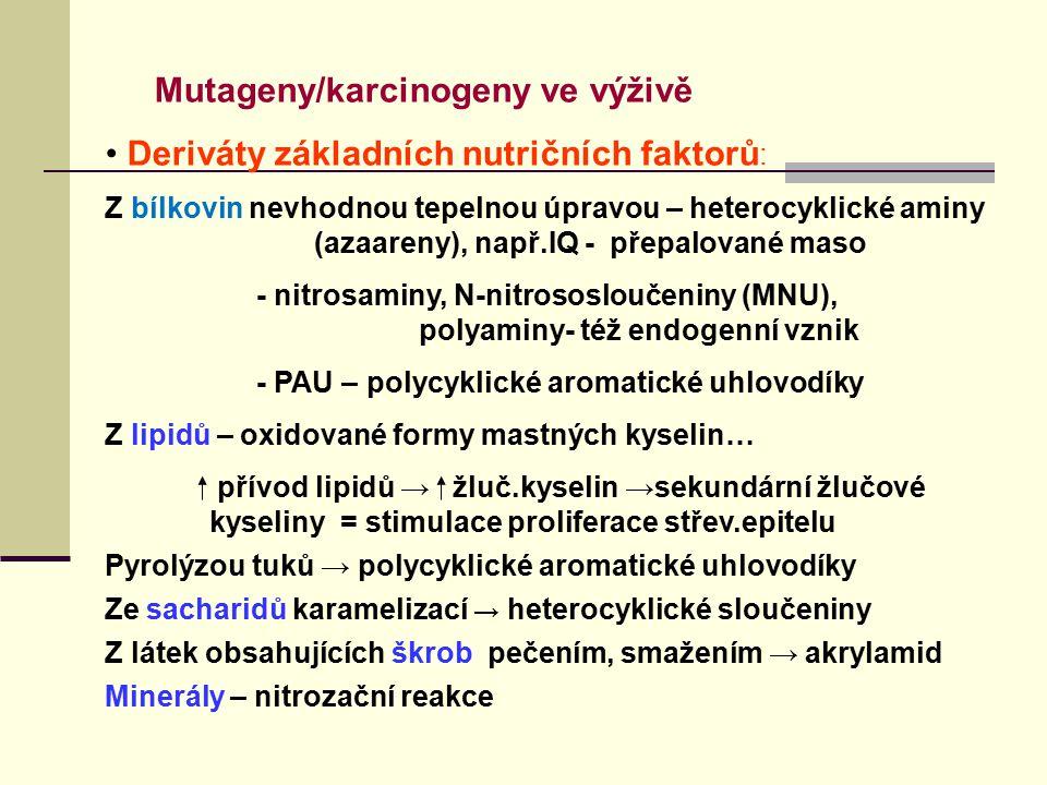 Mutageny/karcinogeny ve výživě Deriváty základních nutričních faktorů : Z bílkovin nevhodnou tepelnou úpravou – heterocyklické aminy (azaareny), např.