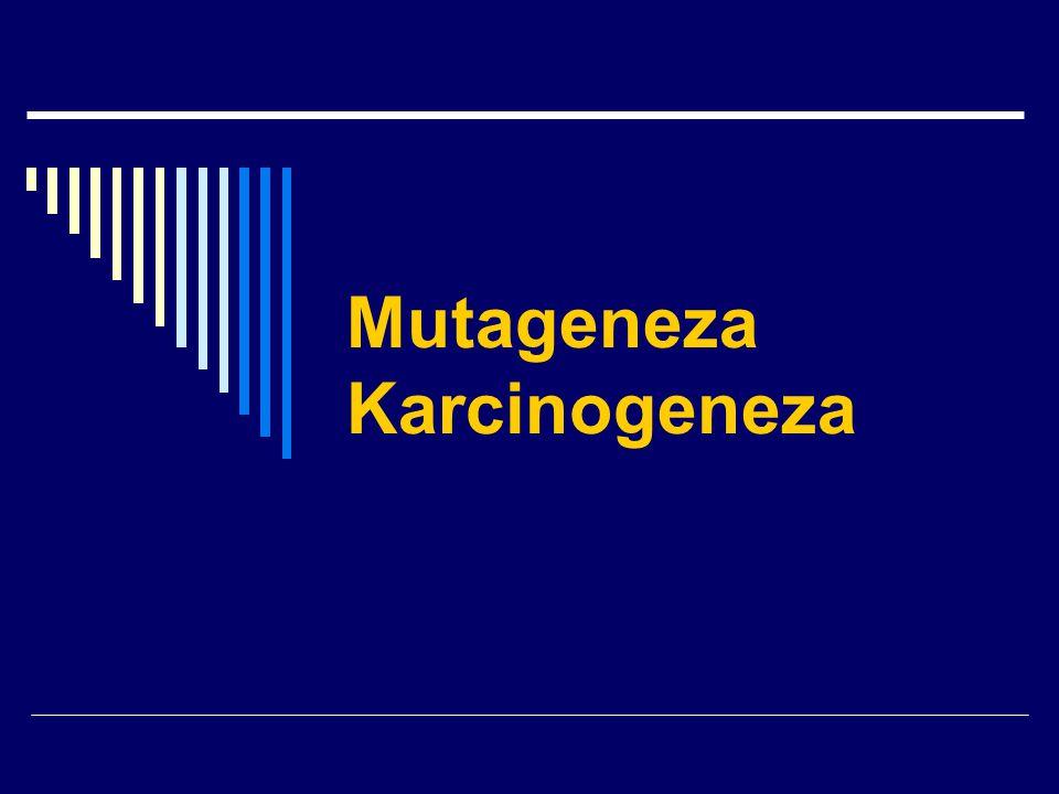 Mutageneza Karcinogeneza