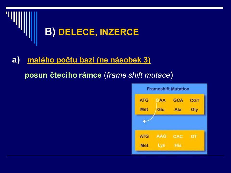 B) DELECE, INZERCE a) malého počtu bazí (ne násobek 3) posun čtecího rámce (frame shift mutace )