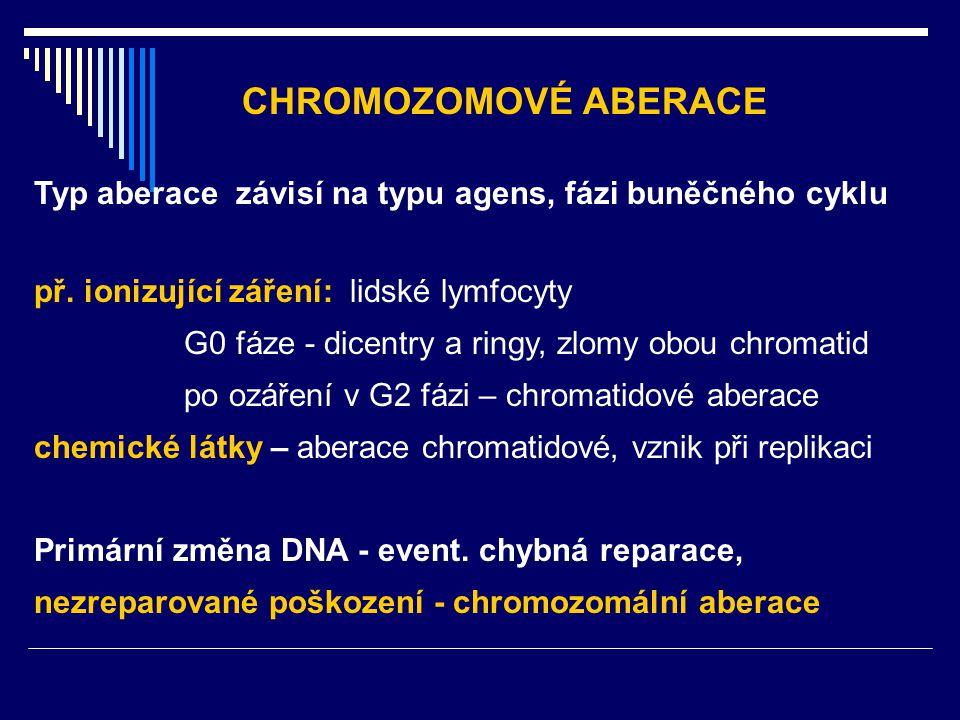 Typ aberace závisí na typu agens, fázi buněčného cyklu př. ionizující záření: lidské lymfocyty G0 fáze - dicentry a ringy, zlomy obou chromatid po ozá