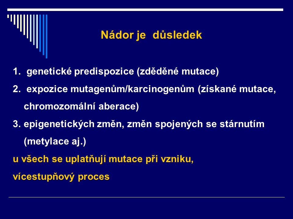 Nádor je důsledek 1. genetické predispozice (zděděné mutace) 2. expozice mutagenům/karcinogenům (získané mutace, chromozomální aberace) 3.epigenetický