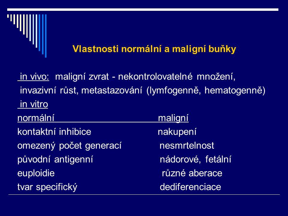 Vlastnosti normální a maligní buňky in vivo: maligní zvrat - nekontrolovatelné množení, invazivní růst, metastazování (lymfogenně, hematogenně) in vit