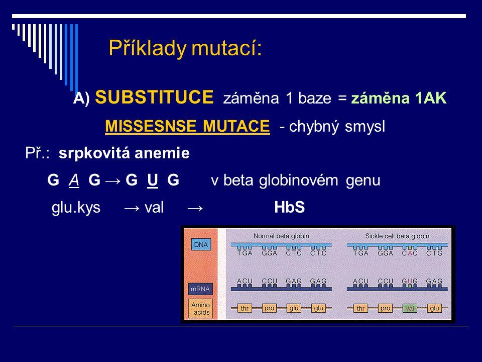 Příklady mutací: A) SUBSTITUCE záměna 1 baze = záměna 1AK MISSESNSE MUTACE - chybný smysl Př.: srpkovitá anemie G A G → G U G v beta globinovém genu g
