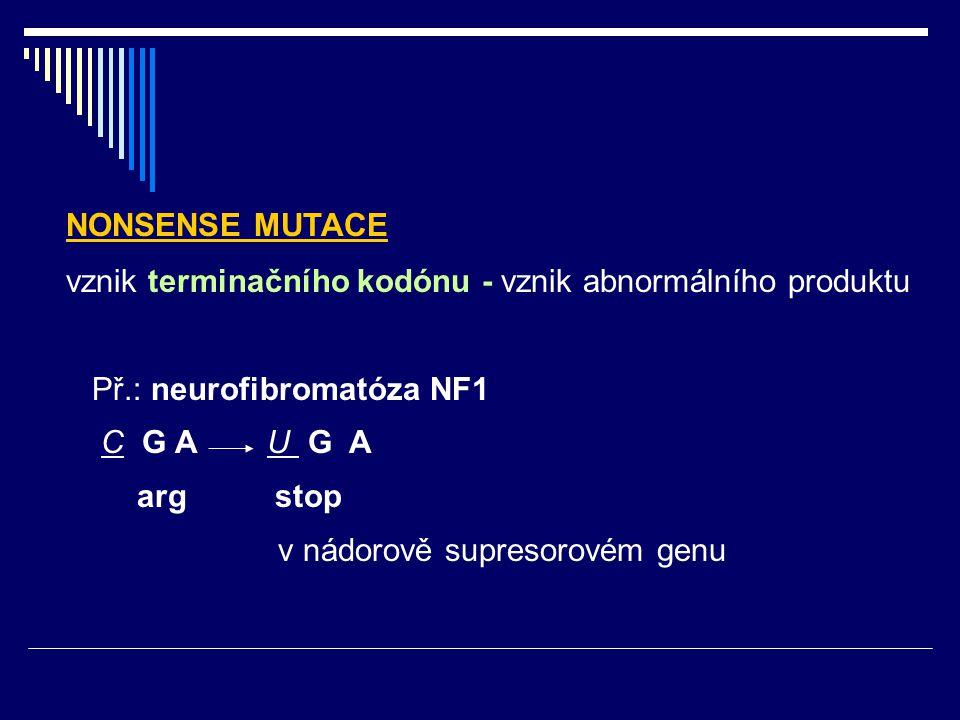 NONSENSE MUTACE vznik terminačního kodónu - vznik abnormálního produktu Př.: neurofibromatóza NF1 C G A U G A arg stop v nádorově supresorovém genu