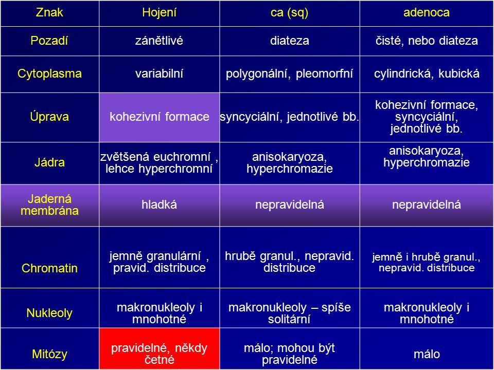 ZnakHojeníca (sq)adenoca Pozadízánětlivédiatezačisté, nebo diateza Cytoplasmavariabilnípolygonální, pleomorfnícylindrická, kubická Úprava kohezivní formace syncyciální, jednotlivé bb.