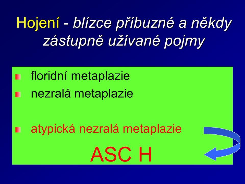 Hojení - blízce příbuzné a někdy zástupně užívané pojmy floridní metaplazie nezralá metaplazie atypická nezralá metaplazie ASC H