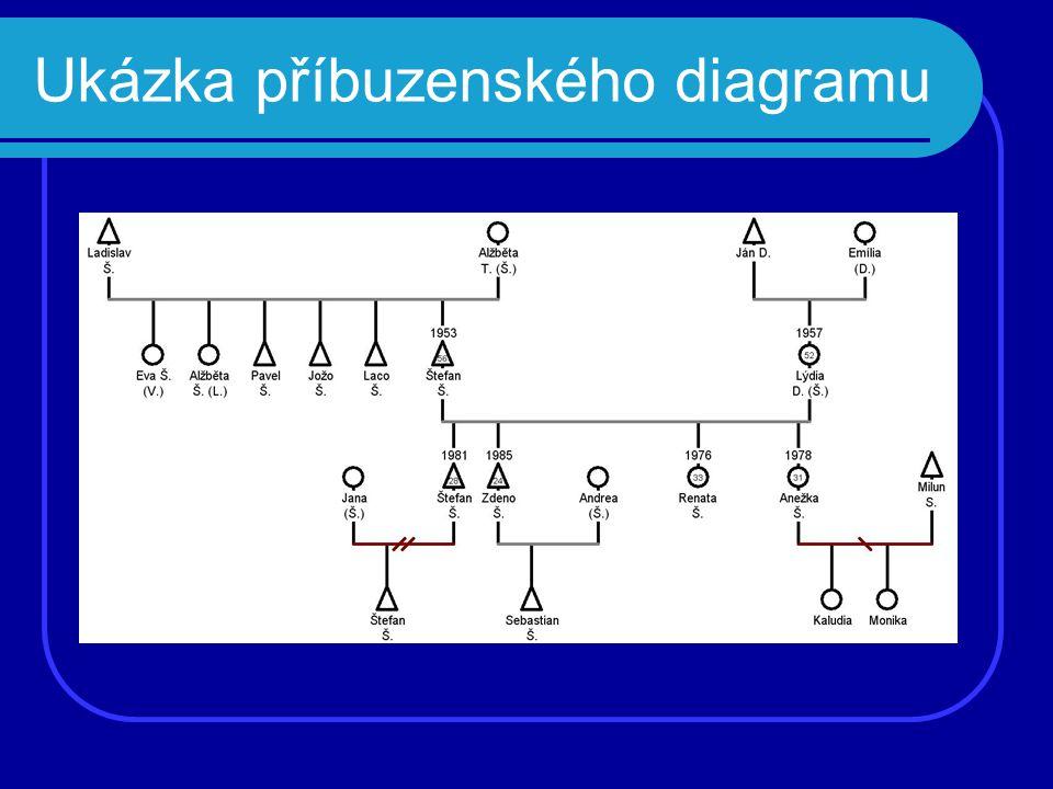 Ukázka příbuzenského diagramu