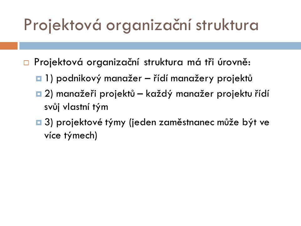 Projektová organizační struktura  Projektová organizační struktura má tři úrovně:  1) podnikový manažer – řídí manažery projektů  2) manažeři proje