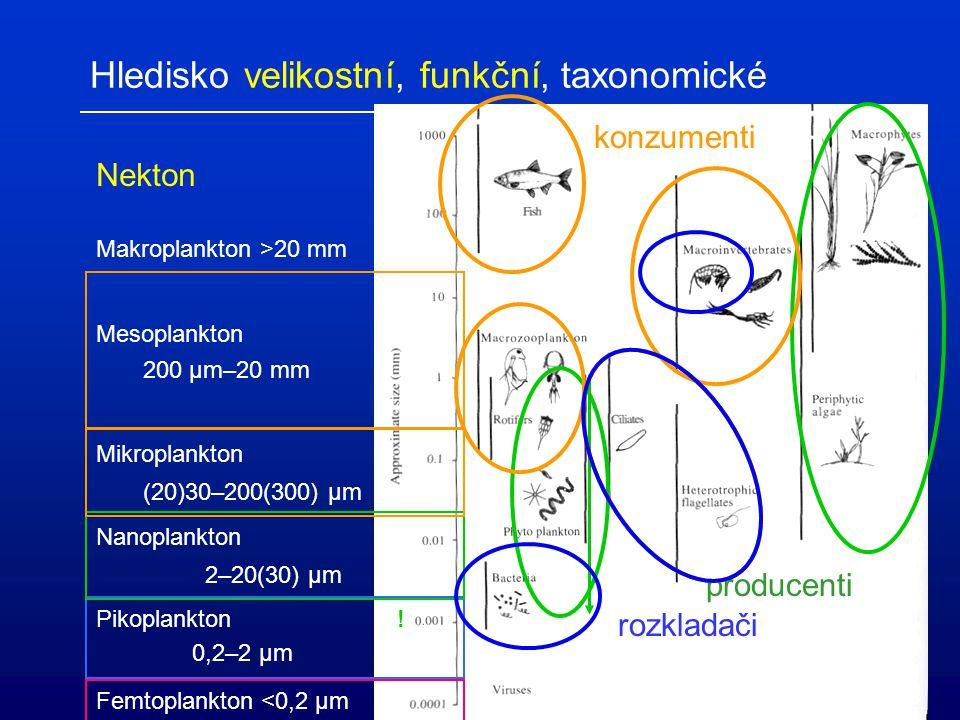 Hledisko velikostní, funkční, taxonomické Femtoplankton <0,2 µm Pikoplankton ! 0,2–2 µm Nanoplankton 2–20(30) µm Mikroplankton (20)30–200(300) µm Meso