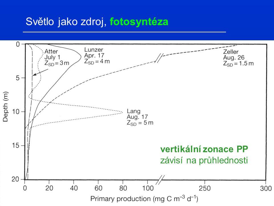 vertikální zonace PP závisí na průhlednosti Světlo jako zdroj, fotosyntéza