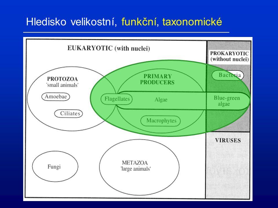 Optimální výživa selekce potravy podle náročnosti zpracování (Daphnia magna, různé řasy) filtrace predace