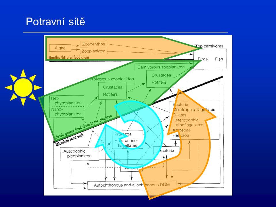 Abiotický rámec výrazná sezonalita (mono-/dimiktické nádrže mírného pásma) určuje sezónní sukcesi planktonu adaptace vodních organismů určují jejich ekologickou niku