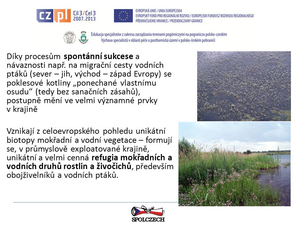 Je třeba mít na paměti, že stanoviště mokřadů a vod jsou vzhledem ke svému významu chráněny mezinárodní Ramsarskou konvencí; dnes hraje vážnou roli také NATURA 2000: výskyt tzv.