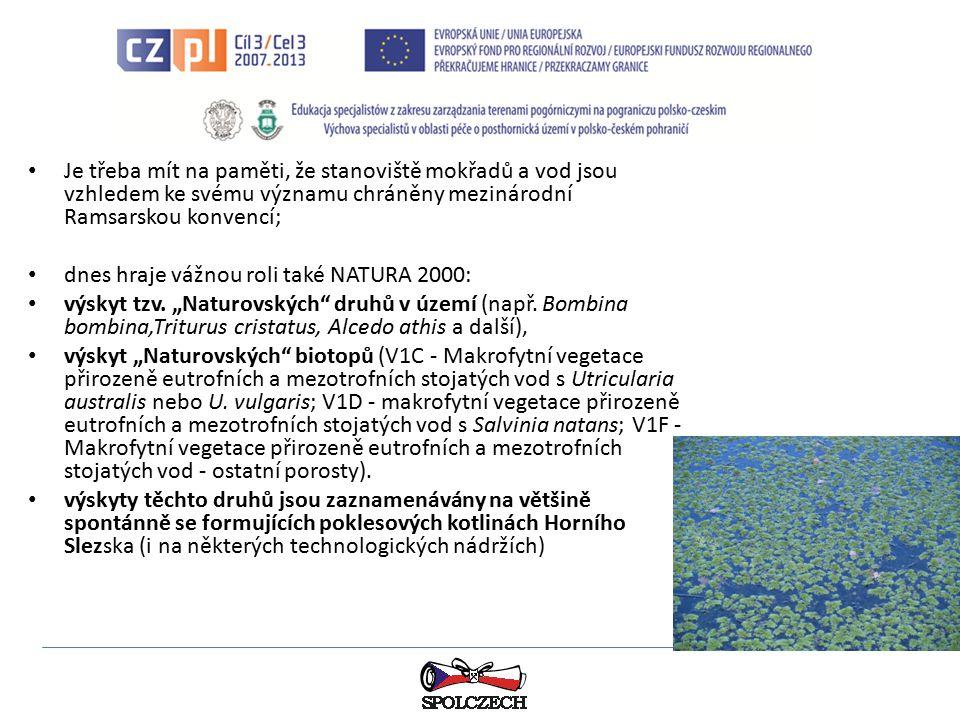 """Výsledky studia chemismu vod potvrzují, že vody v poklesových kotlinách splňují požadavky ČSN 75 7221 """"Klasifikace jakosti povrchových vod (1998), tj."""