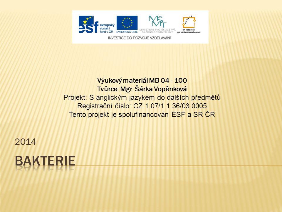 2014 Výukový materiál MB 04 - 100 Tvůrce: Mgr. Šárka Vopěnková Projekt: S anglickým jazykem do dalších předmětů Registrační číslo: CZ.1.07/1.1.36/03.0